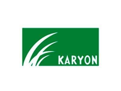 karyon